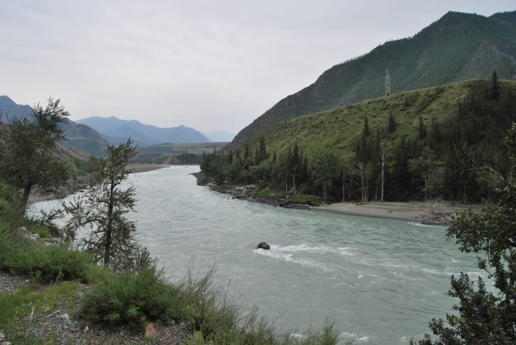 Вид на реку с Чуйского тракта