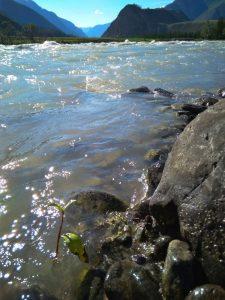 Крупный план на реку Чуя